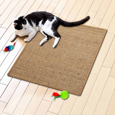 Griffoir tapis chat