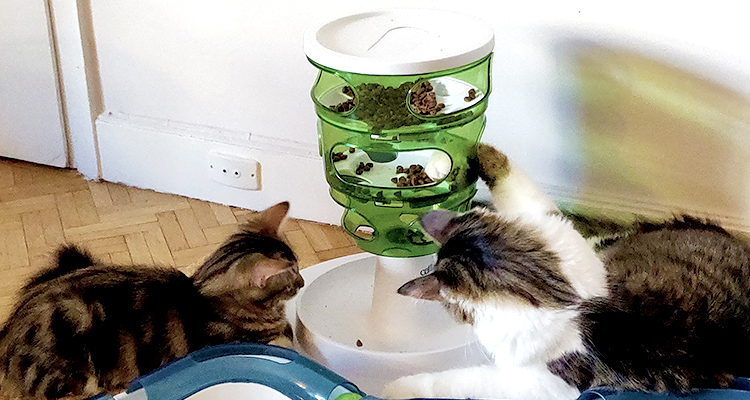 Tour à croquettes Cat-it