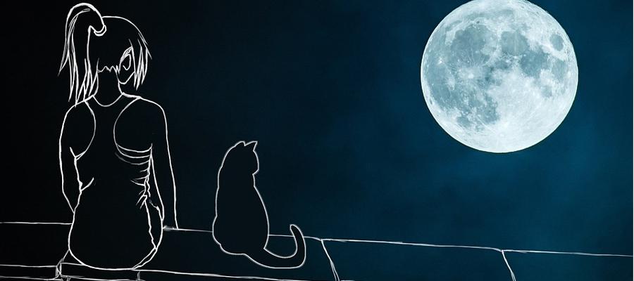 Illustration d'une femme et d'un chat regardant la pleine Lune