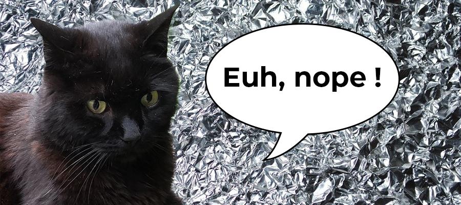 Chat noir qui fuit le papier aluminium