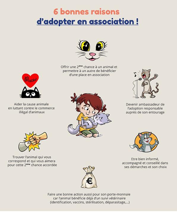 Les 6 bonnes raisons d'adopter en association